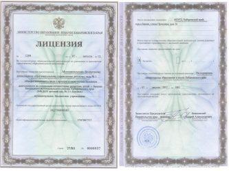 Как получить лицензию на образовательную деятельность ИП?
