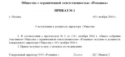 Форма приказа о назначении генерального директора ООО